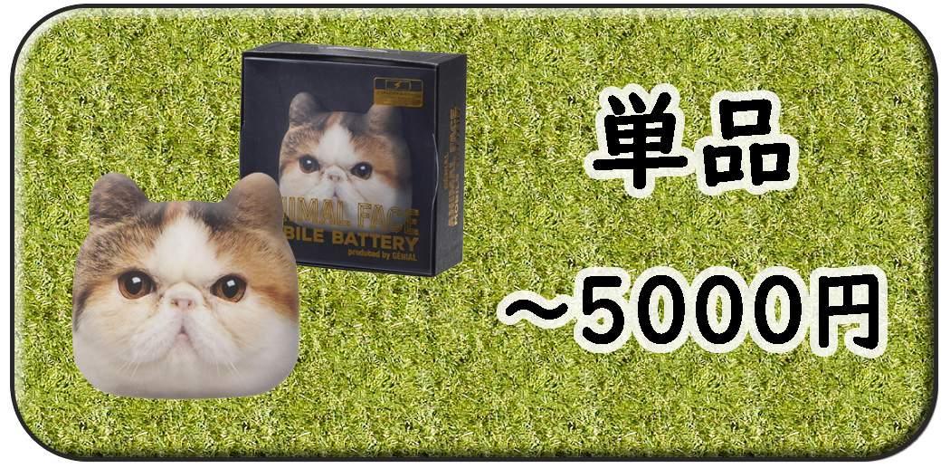 5000円以内の単品景品